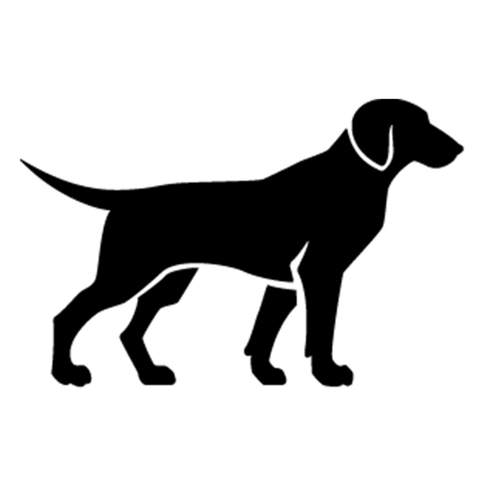 Belloday Blog Ferien mit Hund
